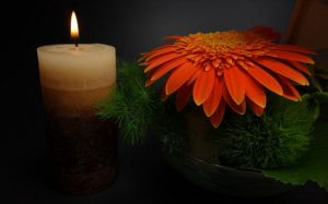 funeral homes in or near Prince Albert, SK